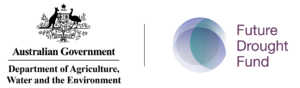 DAWE-FDF-Logo_FDF + DAWE stacked